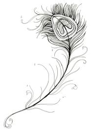 featherweb