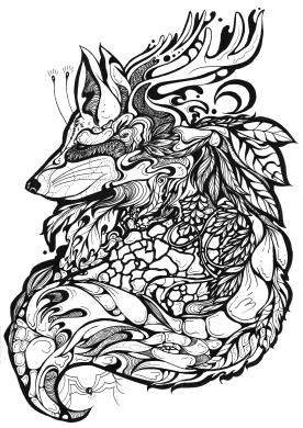 redtail fox black